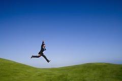 гигантский шаг природы Стоковое Фото