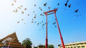 Гигантское качание с птицами, Бангкок стоковая фотография