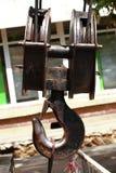 Гигантское carabiner Стоковое Изображение RF