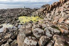 гиганты Ирландия мощёной дорожки северная Стоковая Фотография