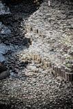 гиганты мощёной дорожки стоковое фото rf