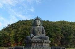 Гигант Будда Стоковые Изображения RF