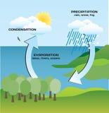 Гидрологический круг иллюстрация штока