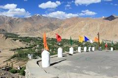 Гималайские поля (Ladakh) Стоковое Изображение RF