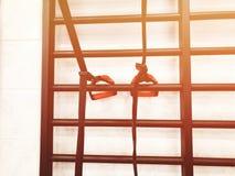гимнастика пригодности оборудования клуба прибора Оборудование, прибор спортзала Изображение оборудования фитнеса в спортзале Стоковое Фото