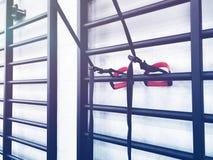 гимнастика пригодности оборудования клуба прибора Оборудование, прибор спортзала Изображение оборудования фитнеса в спортзале Стоковые Изображения