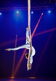 Гимнаст воздуха цирка молодой женщины Стоковое Изображение RF