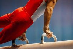 Гимнаст мужчины лошади Pomme стоковая фотография rf