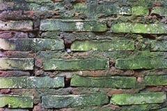 Гипсолит стены Стоковые Изображения