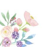 Гирлянда пинка цветочной композиции рамки лета венка акварели угловой покрашенная рукой Стоковое Изображение RF
