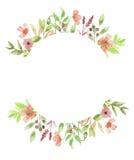 Гирлянда рамки венка цветка мака акварели флористической покрашенная рукой Стоковое Фото