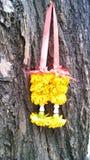 Гирлянда ноготков на старом дереве Стоковое Изображение RF