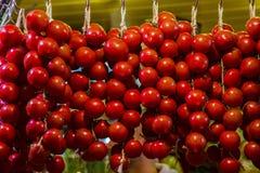Гирлянда томата Стоковое Фото