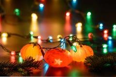 Гирлянда tangerines рождества Стоковое Изображение RF