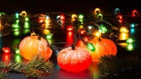 Гирлянда tangerines рождества Стоковые Фотографии RF