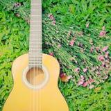 Гитара гавайской гитары на траве с цветком Стоковые Изображения RF