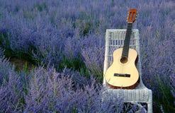 Гитара на стуле в русском шалфее стоковые изображения rf