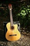 гитара страны Стоковые Фото