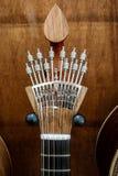 Гитара фаду строки португалки 12 Стоковые Фото