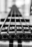 гитары празднества Дубай 2011 полосы выполнять macy джаза басовой серой международный Стоковая Фотография
