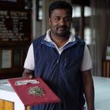 Гид в фабрике чая Dambatenne, Шри-Ланке Стоковые Фото