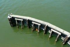 Гидравлическая структура и деревянная дорожка в реке Стоковая Фотография RF