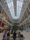 Главная галерея, Национальный музей Scotlands, Эдинбург стоковые изображения