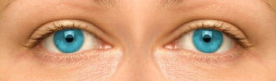 Глаза женщины Стоковые Изображения RF