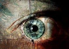 глаза имели если стены Стоковая Фотография RF