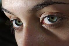 глаза имеют Стоковые Изображения