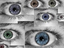 глаза коллажа Стоковая Фотография RF