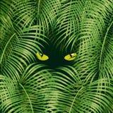 глаза кота одичалые иллюстрация вектора