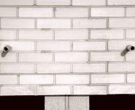 Глаза на кирпичной стене стоковые фотографии rf