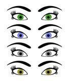 глаза Стоковые Фотографии RF
