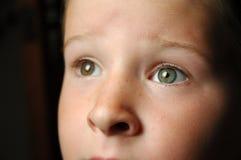 глаза gazing Стоковые Фотографии RF