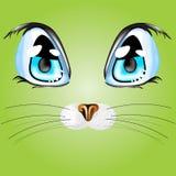Глаза ` s кота стоковая фотография
