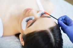Глаз женщины с длинними ресницами Плетки, конец вверх, выбранный фокус стоковое фото rf