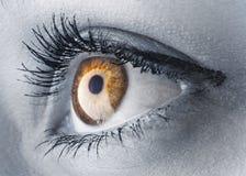 глаз золотистый Стоковое Фото