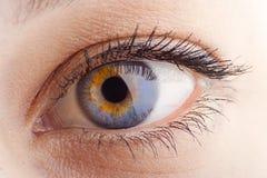 глаз крупного плана стоковое фото rf