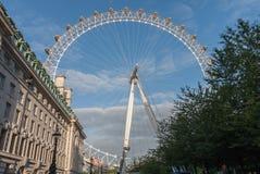 Глаз Лондона, тысячелетие катит внутри Лондон в утре Стоковое фото RF