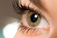 глаз открытый Стоковые Изображения