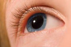 глаз открытый стоковое фото rf