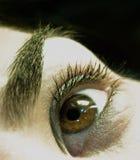 глаз раскрывает Стоковые Фотографии RF