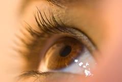 глаз раскрывает Стоковое Фото