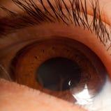 глаз шарика Стоковая Фотография