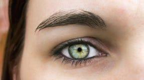 глаз эльфа Стоковое Изображение RF