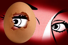 глаз яичка стоковое фото rf