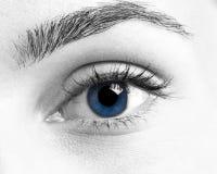 глаз Стоковое Изображение RF
