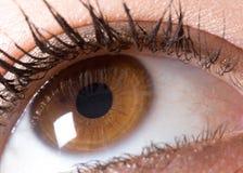 глаз Стоковое Фото