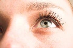 глаз 3 Стоковые Изображения RF